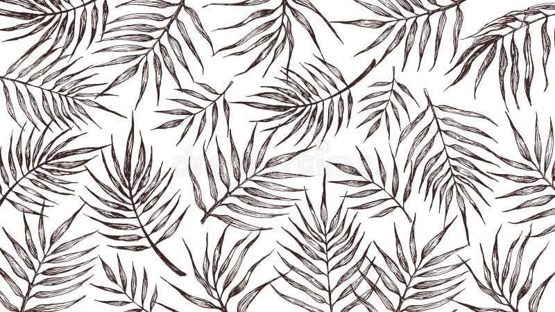 Tło z tropikalnymi liśćmi na białym tle ilustracja wektor