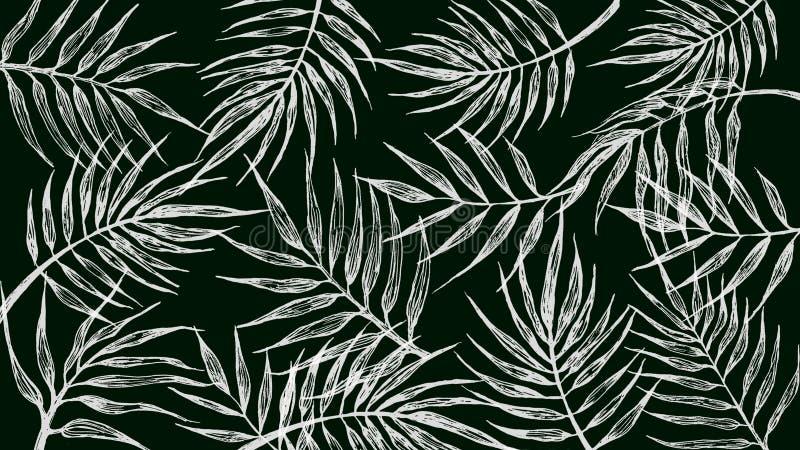 Tło z tropikalnymi liśćmi na czarnym tle ilustracja wektor