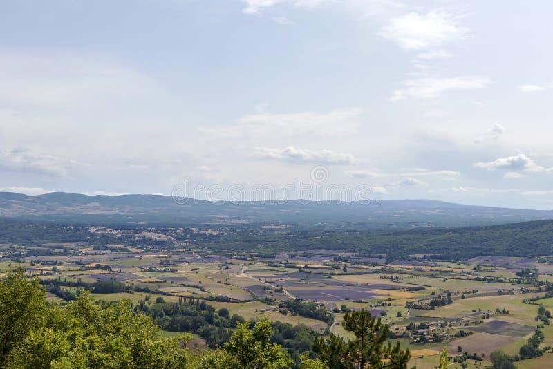 Tło z widokiem z lotu ptaka na lawend polach przy Provence, południe Francja obrazy royalty free