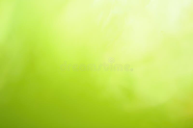 tło zieleń zdjęcia royalty free