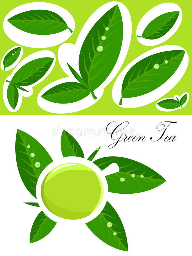 tło zielona herbata royalty ilustracja