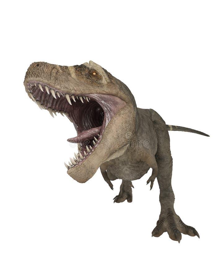T雷克斯恐龙攻击 库存图片