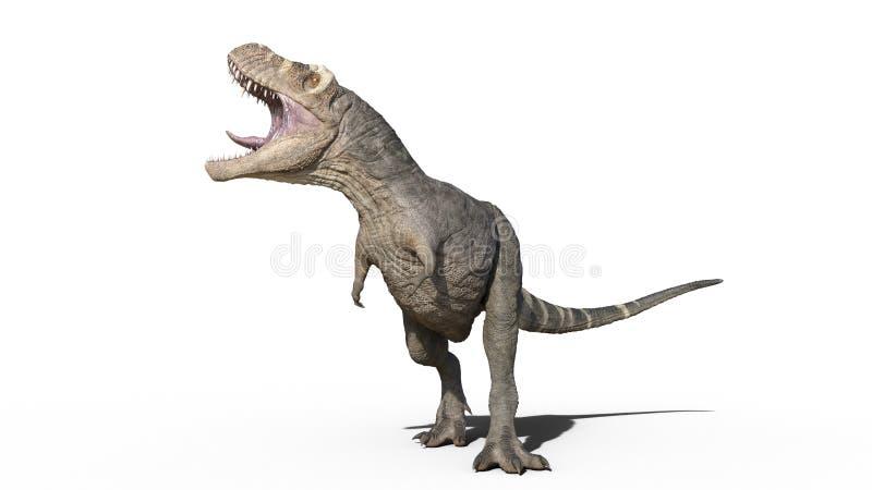 T雷克斯恐龙,暴龙雷克斯爬行动物吼声,在白色背景隔绝的史前侏罗纪动物,3D翻译 向量例证