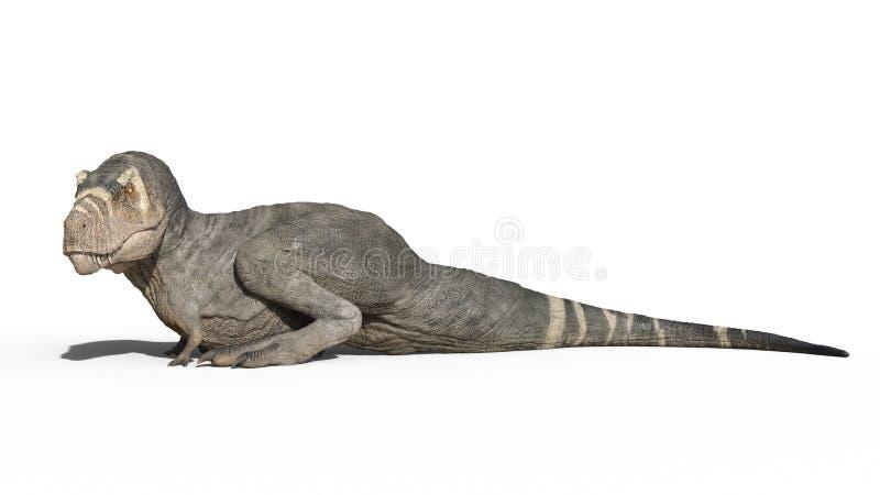 T雷克斯恐龙,暴龙雷克斯爬行动物开会,在白色背景隔绝的史前侏罗纪动物,3D翻译 库存例证