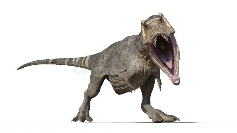 T雷克斯恐龙,暴龙雷克斯爬行动物,咆哮在白色背景,正面图,3D的史前侏罗纪动物翻译 向量例证