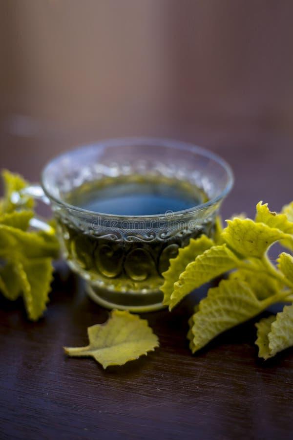 T? coloreado verde de la hierba de lim?n en una taza transparente en la superficie de madera de color marr?n usada para curar el  imagen de archivo