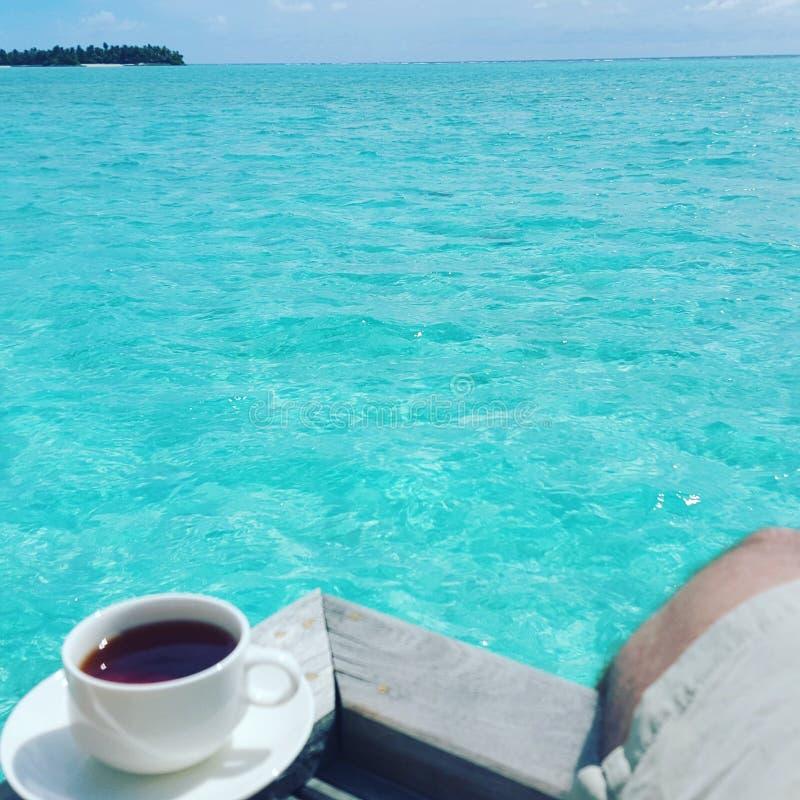 T em Maldivas fotos de stock royalty free