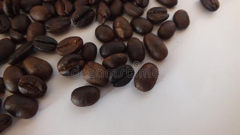 t?a fasoli kawowy biel zdjęcia royalty free