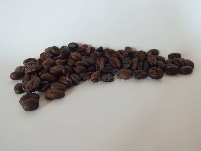 t?a fasoli kawowy biel zdjęcie stock