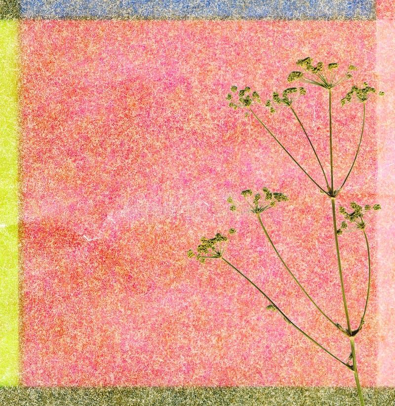 Download Tła koloru koper zdjęcie stock. Obraz złożonej z dekoruje - 13328256