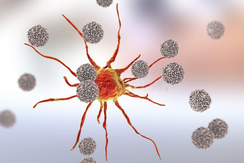 T-lymfocyten die kankercel aanvallen stock illustratie