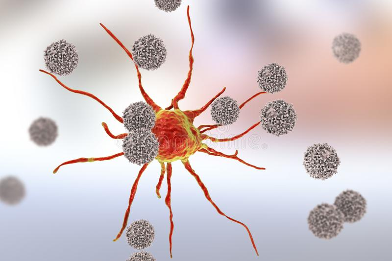 T-lymphocytes attacking cancer cell. 3D illustration. Anticancer immunity and treatment concept stock illustration