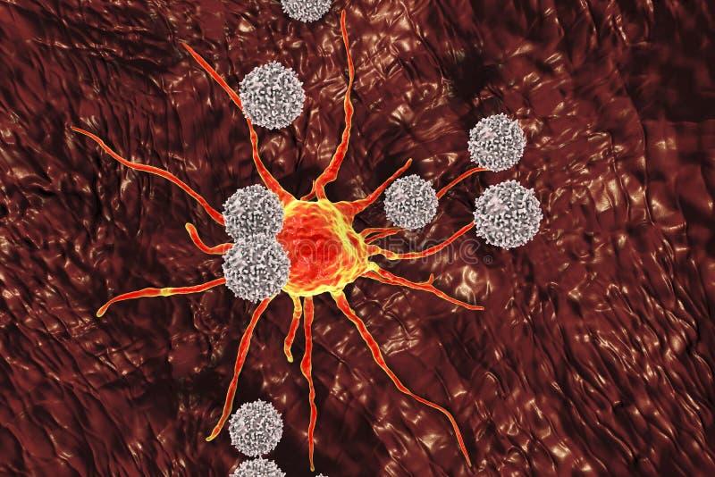 T-lymphocytes som anfaller cancercellen royaltyfri illustrationer