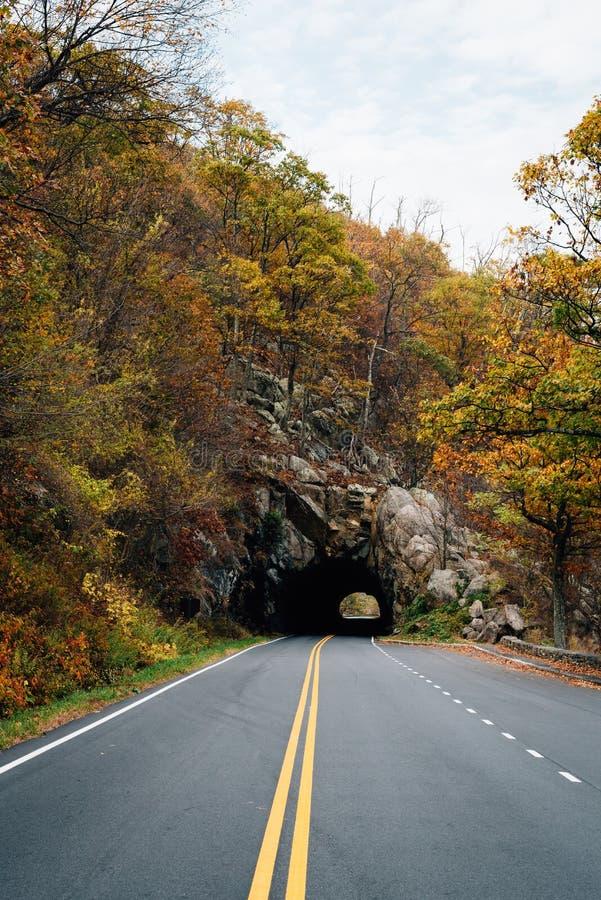 T?nel da rocha de Mary, na movimenta??o da skyline no parque nacional de Shenandoah, Virg?nia fotos de stock royalty free