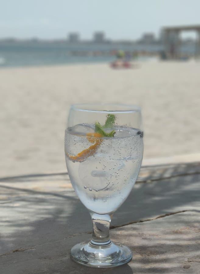 T?nico de la ginebra en la playa fotografía de archivo libre de regalías