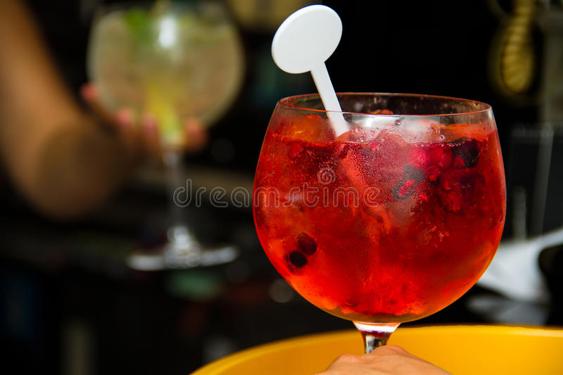 Tônico Gin Cool Beverage Red imagens de stock royalty free