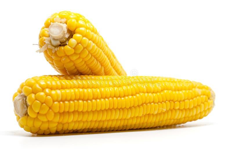 t?o biel kukurydzany s?odki obraz stock
