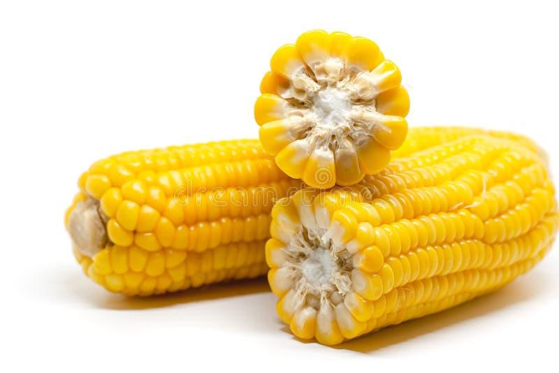 t?o biel kukurydzany s?odki zdjęcia royalty free
