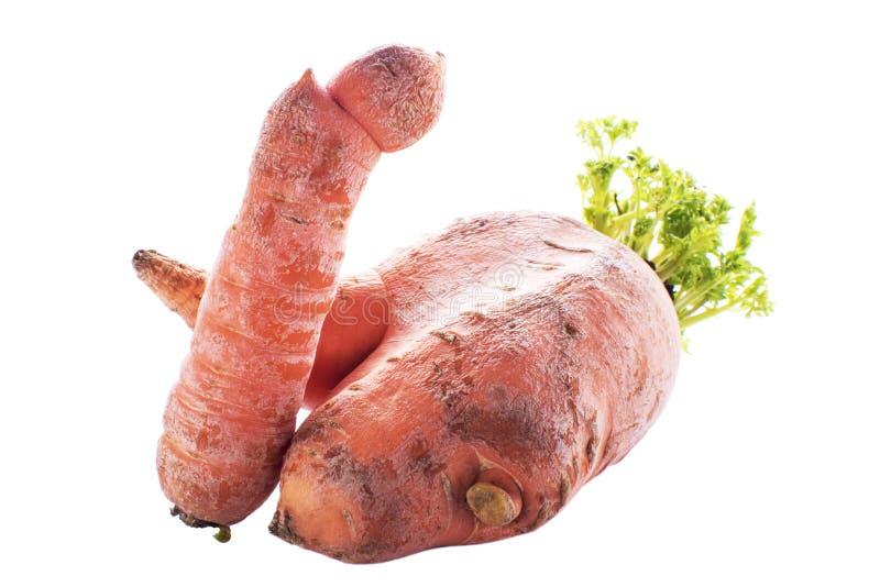 t?o marchewki odizolowywali biel Brzydkie organicznie krajowe marchewki Dwa marchewki przekr?cali w each inny Brzydki jedzenie ci obrazy royalty free
