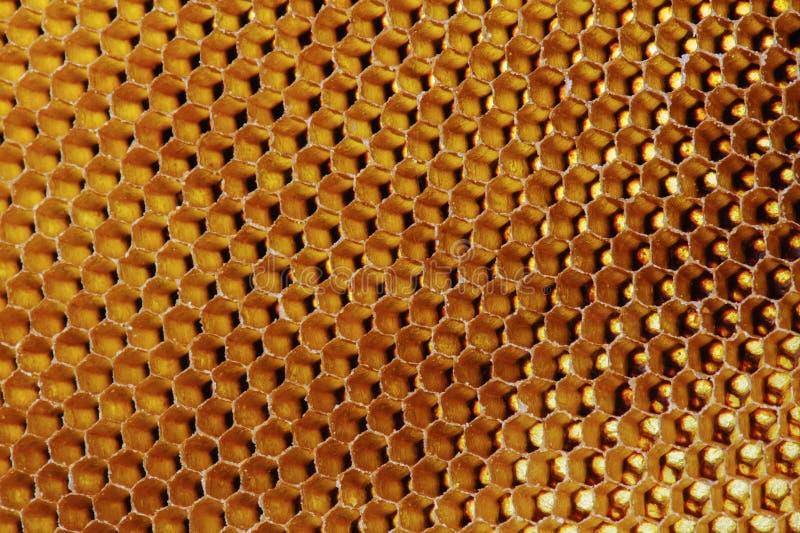 T?o tekstura i wz?r sekcja wosku honeycomb od pszczo?a roju wype?niali?my z z?otym miodem w makro- widoku zdjęcie stock