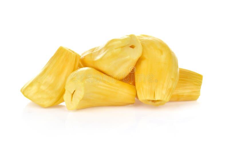 t?a odosobniony jackfruit biel obraz stock