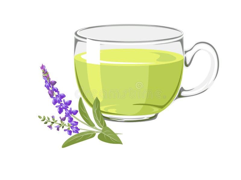 T? prudente Tisana sana in una tazza di vetro e nei ramoscelli prudenti di fioritura i illustrazione vettoriale