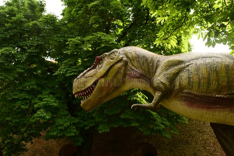 T-rex в джунглях стоковое фото rf