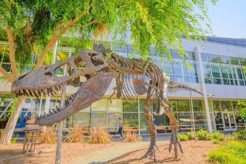 T-Rex kościec przy Googleplex zdjęcia stock