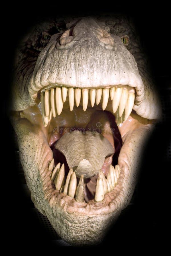 T-rex Kopf lizenzfreie stockbilder