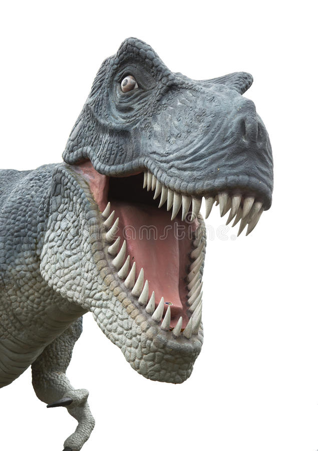 T-Rex på vit royaltyfria foton