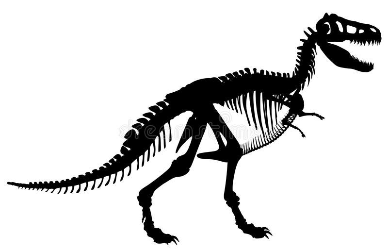 T Rex Skeleton Stock Vector. Illustration Of Black
