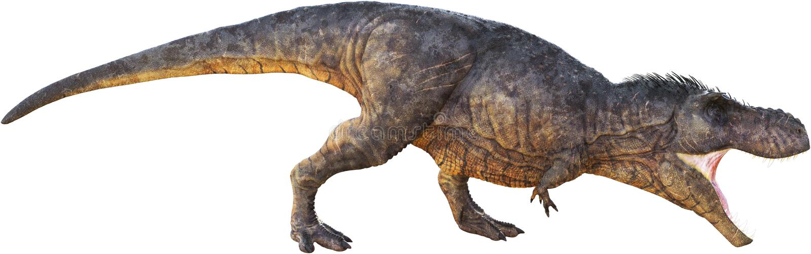 T-Rex, Tyrannosaurus Rex, Isolated, Hunting Stalking stock illustration