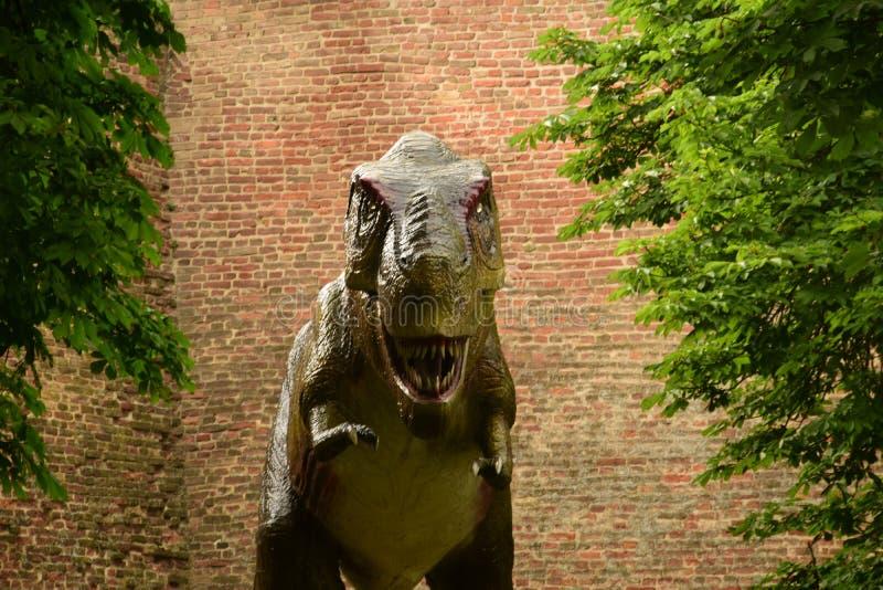 T-rex vicino alle pareti fotografia stock