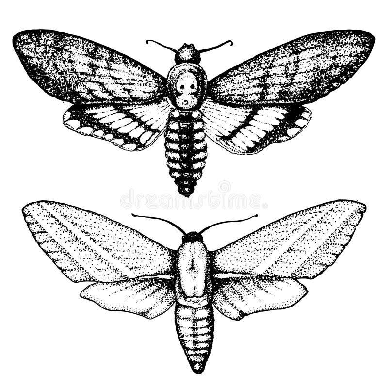 T-shirt de tatouage ou de boho ou conception scrapbooking Symbole ésotérique mystique de la liberté et du voyage Papillon ou inse illustration stock