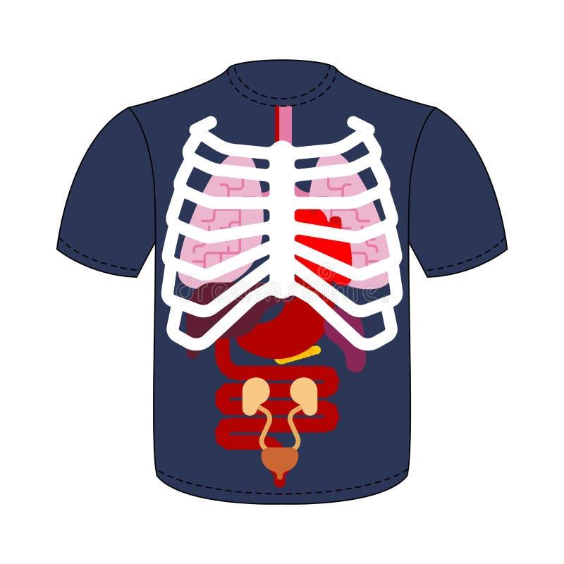 T-shirt Interne organen en Ribbenkast Menselijke anatomie Systemen van royalty-vrije illustratie