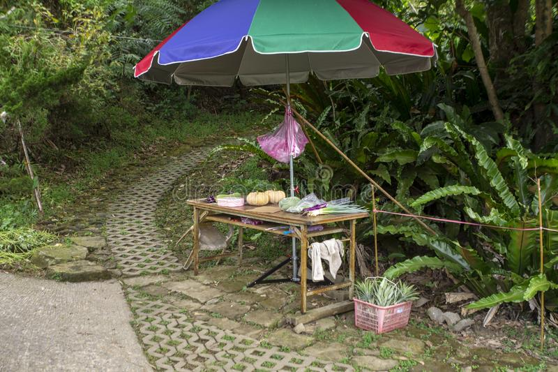 Taïpeh, Taïwan, pays, personne, libre service, vendeurs de fruits et légumes, donnent photographie stock libre de droits