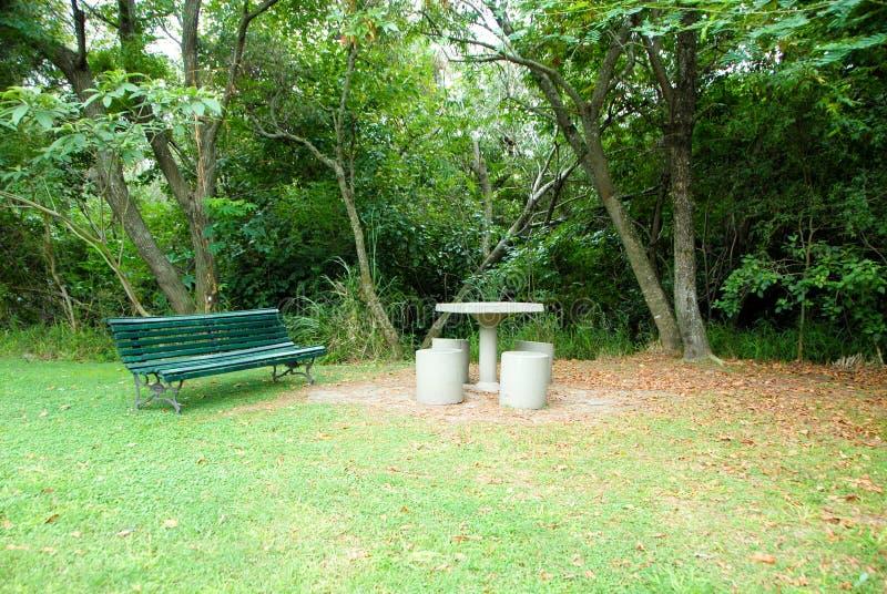 Ta av planet i en parkera överflödande vegetation royaltyfri fotografi