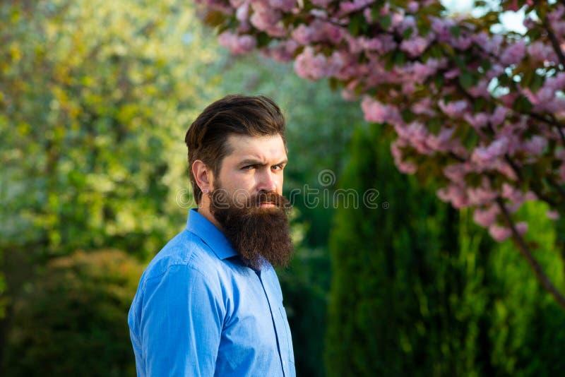 Ta hand om en ung man på vårens bakgrund och titta på kameran Male model Enjoying Nature Romantisk skönhet i fantasi royaltyfri fotografi