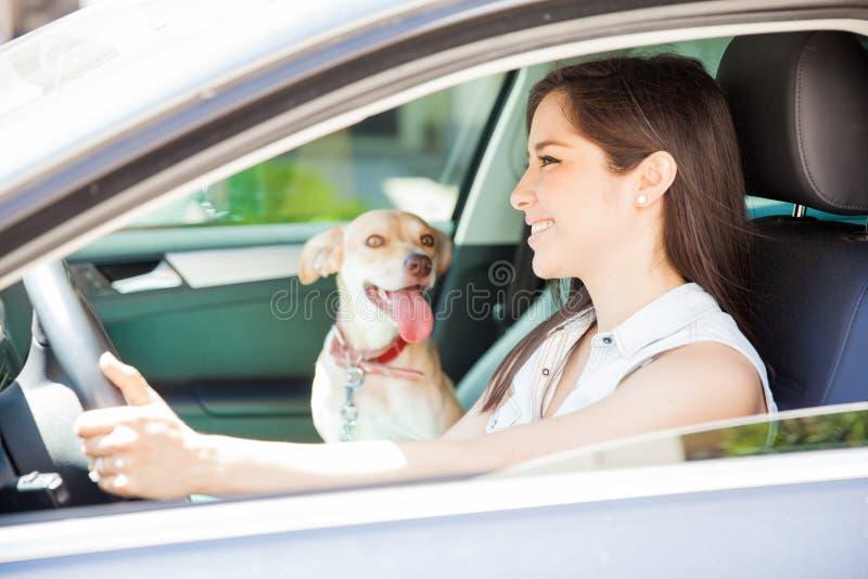 Ta min hund för en ritt royaltyfri bild