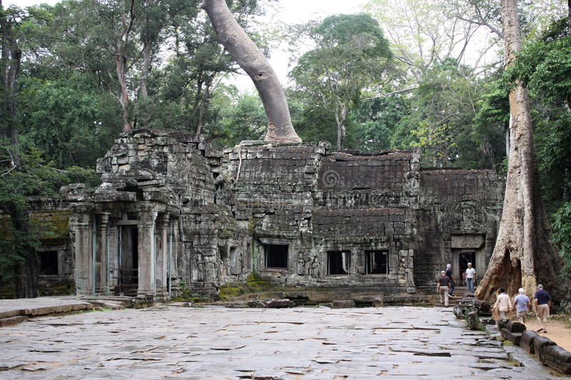 Ta Prohm foto de stock
