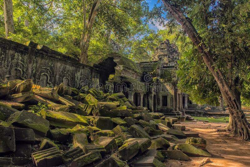 Ta Prohm, part of Khmer temple complex, Asia. Siem Reap, Cambodia royalty free stock images