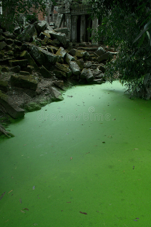 Download Ta Prohm temple lake stock photo. Image of historic, outdoors - 7282714