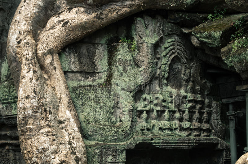 Ta Prohm temple. One of the Angkor temples in Cambodia, close to the city Siem Reap. Not far from the famous Angkor Wat. The temple seems lost in a jungle and royalty free stock photo