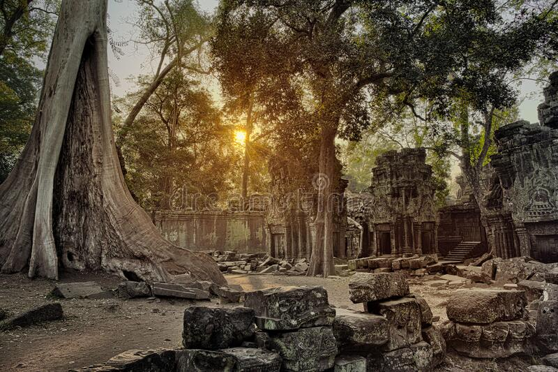 Ta Prohm temple in Angkor Wat Cambodia stock photo