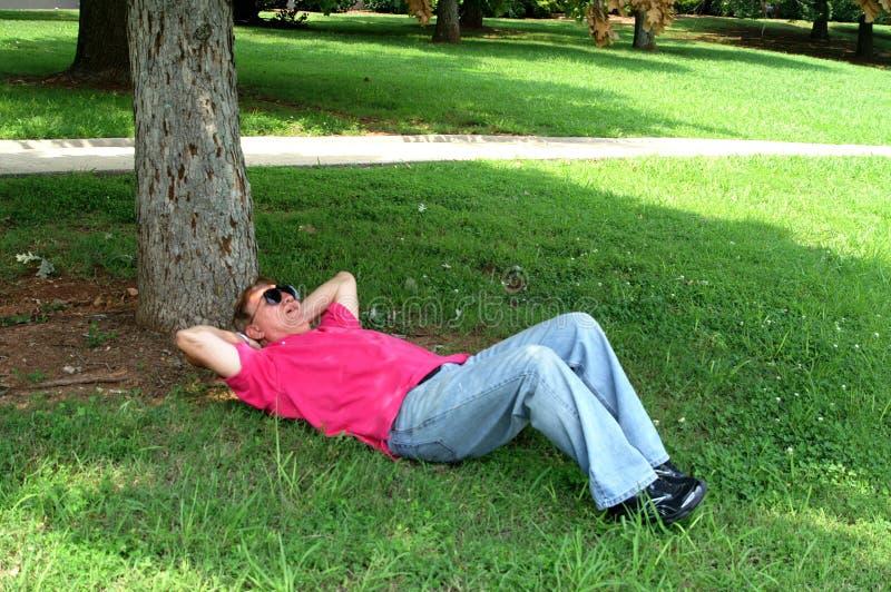ta sig en tupplur kupatree för man under arkivbild