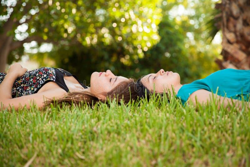 Ta sig en tupplur tillsammans på en parkera royaltyfria foton