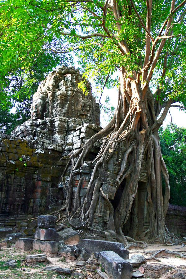Ta Som Temple,Angkor stock image