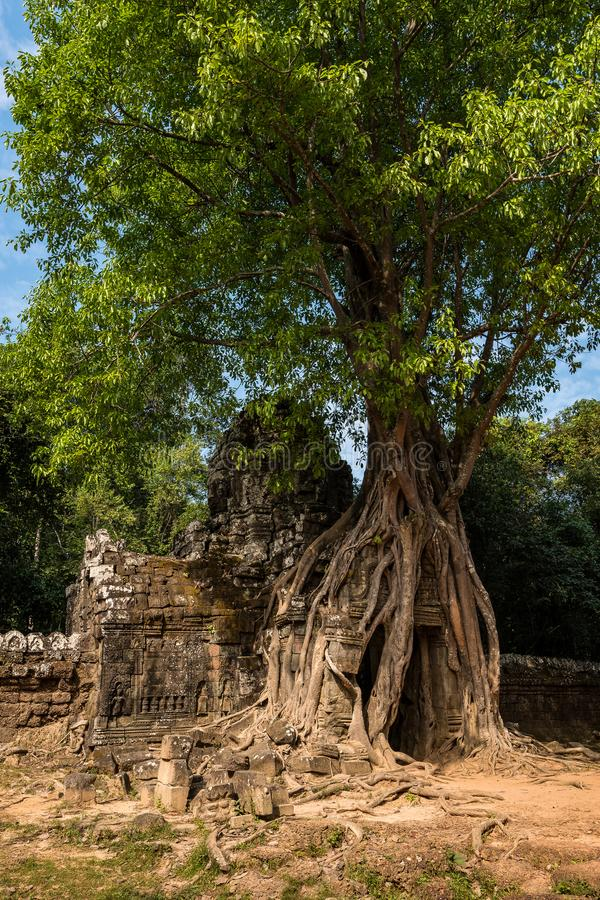 Ta Som temple in Angkor Wat complex, Cambodia, Asia stock photo