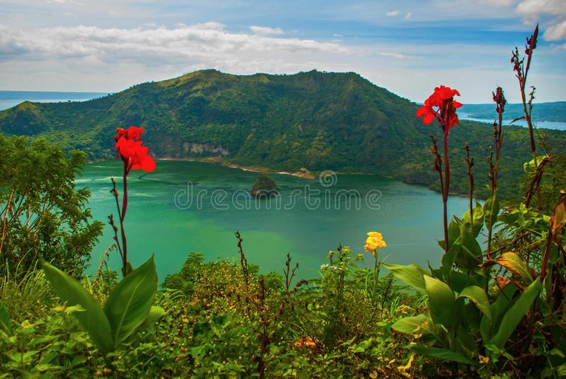 Taal Volcano and flowers in Tagaytay, Philippines royalty free stock images