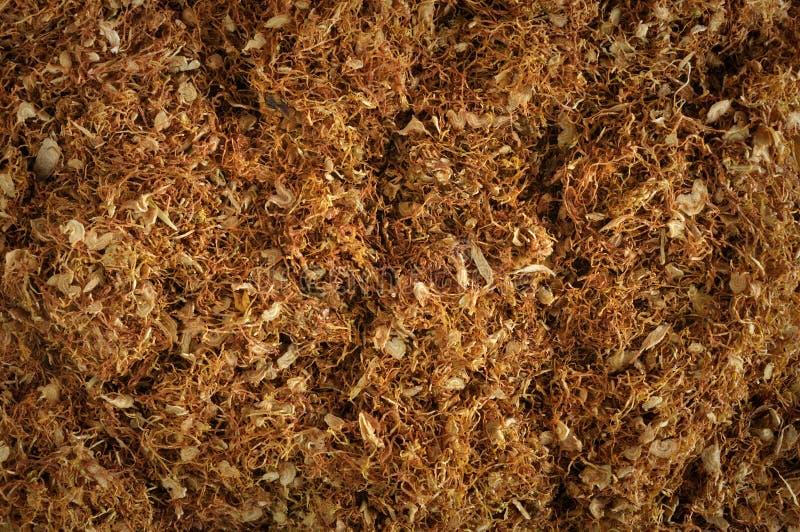 Tabac photos stock